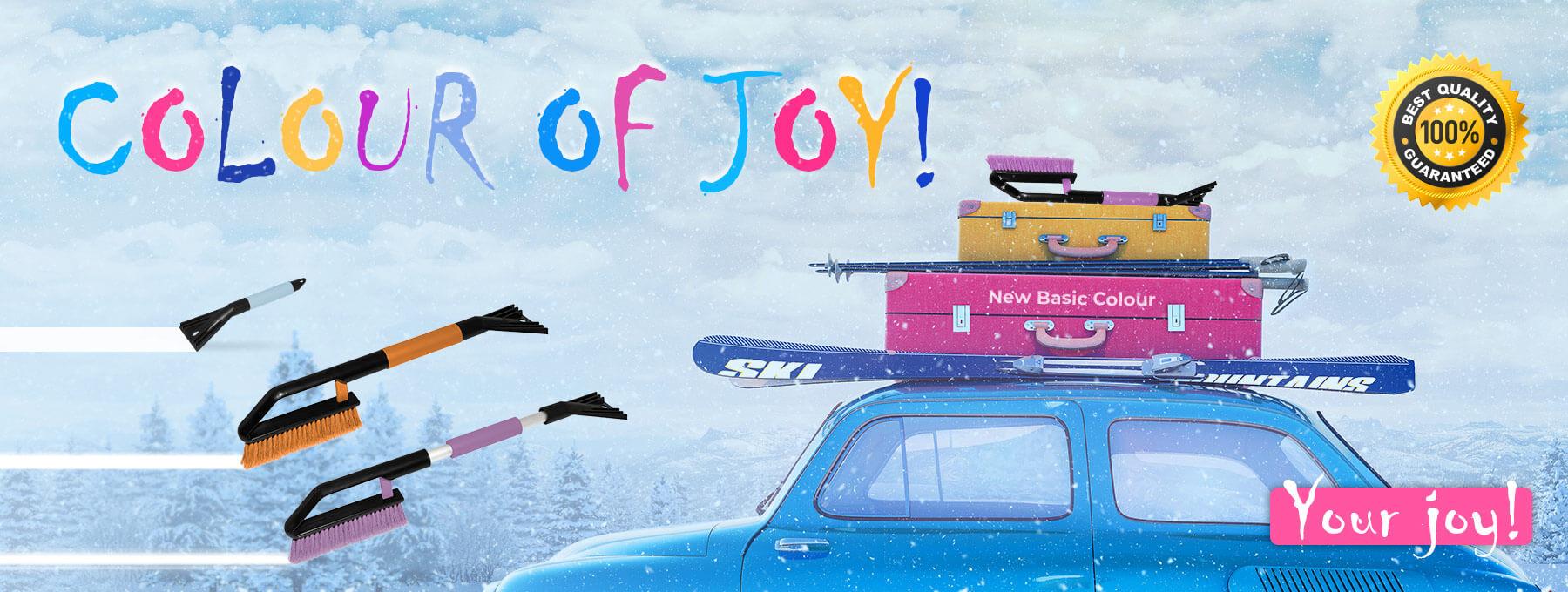 Color of Joy